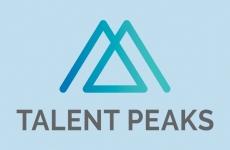 Talent Peaks grafische ondersteuning